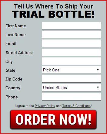 TesTo XL Free Trial